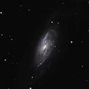 M106 LRGB,                                Steve Ibbotson