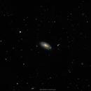 M88 (NGC4501),                                brad_burgess