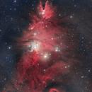 It's always Christmas in Monoceros (NGC 2264),                                Todd