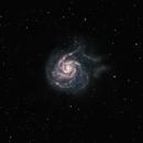 The Pinwheel Galaxy (M101),                                Jeffrey Horne