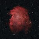 NGC 2174 - Monkey Head Nebula,                                Bob Stewart