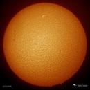 Sun - AR 12704,                                Damien Cannane