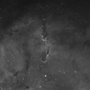 IC1396 Elephant Trunk,                                Pawel Turek