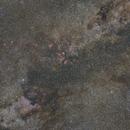 Cygnus Widefield,                                Paul Wittau