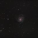 M101,                                Michael