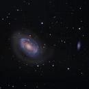 NGC4725,                                Dick Newell