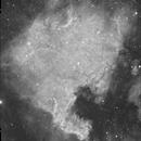 NGC7000 in Ha,                                Bill Mark