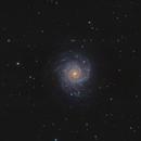 M74 - Spiral Galaxy in Pisces,                                Mikko Viljamaa