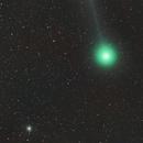 Comet C/2014 Q2 Lovejoy and M79 ,                                Andrea Pistocchini - pisto92