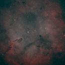 Elephant nebula,                                luzw