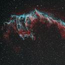 Veil Nebula HOO with RGB Stars,                                Rodd Dryfoos