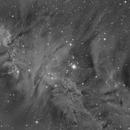 NGC2264  HA 2 panel 2 x drizzel,                                Vincent