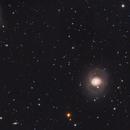 M77 and NGC1055 - Galaxy pair in Cetus,                                Stellario