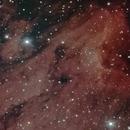 IC5070 - Pelican,                                Rich Sky