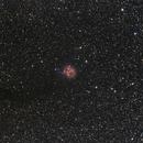 [Neb] IC5146 (Nébuleuse du Cocon) @Jack,                                Raypulsif