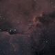 Elephant's Trunk Nebula in IC1396,                                Ryan Betts