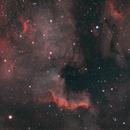 The North America Nebula,                                Twan Oligschlaeger