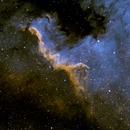 Cygnus Wall,                                Everett Quebral