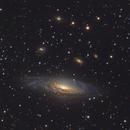 NGC7331,                                Danny Flippo