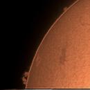 Sun Spotless Penumbra, Sunspot with plage and prominences on International SUNday,                                Tej Dyal