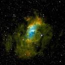 Bubble Nebula,                                Dennis Roscoe, Ph.D.