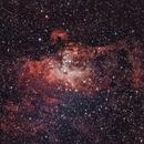 Eagle Nebula (M16),                                Dan Gallo