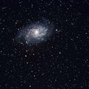 M33,                                Christiaan Burchell