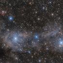 VdB 14, VdB15 reflective nebula in Giraffe,                                Lukas Nestak