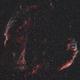 Veil Nebula Complex,                                herwig_p