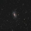 NGC925,                                Niamor