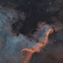 NGC 7000 - ASI1600MM Pro First Light,                                jdifool