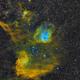 IC410 & IC405 in Auriga (HST Palette),                                Kirk
