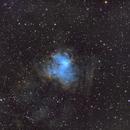NGC 1491 - SHO,                                Michael J. Mangieri