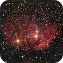 The Tulip Nebula (sh2-101),                                Datalord