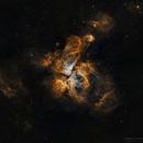 The Great Carina Nebula at 5° altitude.,                                Prabhu S Kutti
