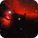 Horsehead Nebula & Flame Nebula,                                Alan Mason
