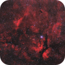 IC 1318 (Ha + RGB),                                Scott Davis
