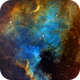 NGC 7000 North American Nebula in Cygnus,                                Francois Theriault