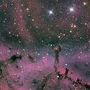 Le carnaval des animaux (Details in the Rosetta Nebula),                                José Joaquín Pérez