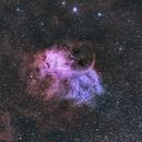 Sh2-132 (Lion Nebula),                                ParyshevDenis