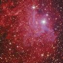 IC405 - Crop,                                Friesenjung