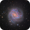 southern pinwheel galaxy (M83),                                pfile