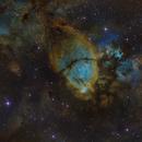 The Fishhead Nebula (IC  1795),                                Josh Woodward