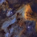 IC 5070 - The Pelican Nebula,                                Trevor Gunderson