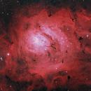 M8  with L-eNhance filter test,                                Morris Yoder