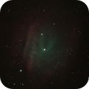 SH2-313 Abell 35 Faint, interesting nebula with high res bow shock in Ha/Oiii with EdgeHD11,                                Freestar8n
