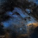 IC5070 SHO - Nebulosa del Pelícano,                                José Fco. del Agu...