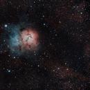 M20 Trifid Nebula,                                Andrea Collevecchio