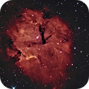 GUM 15--The Southern Heart Nebula,                                Russ Carpenter