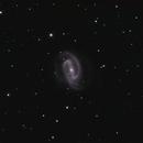 NGC1300 LRGB,                                Christopher Gomez